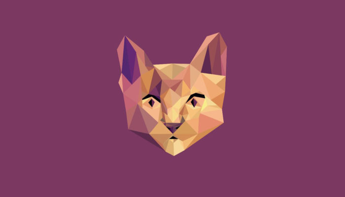 Incredible SVG Polygon Animations on Codepen Part - 2 - Yolyfie